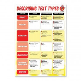 Text Type Overview Poster